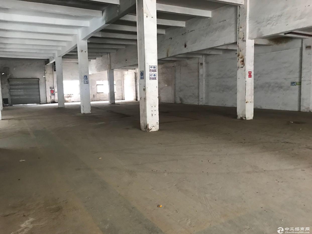 坪山碧岭一楼1200平厂房,不限行业 空地大-图2
