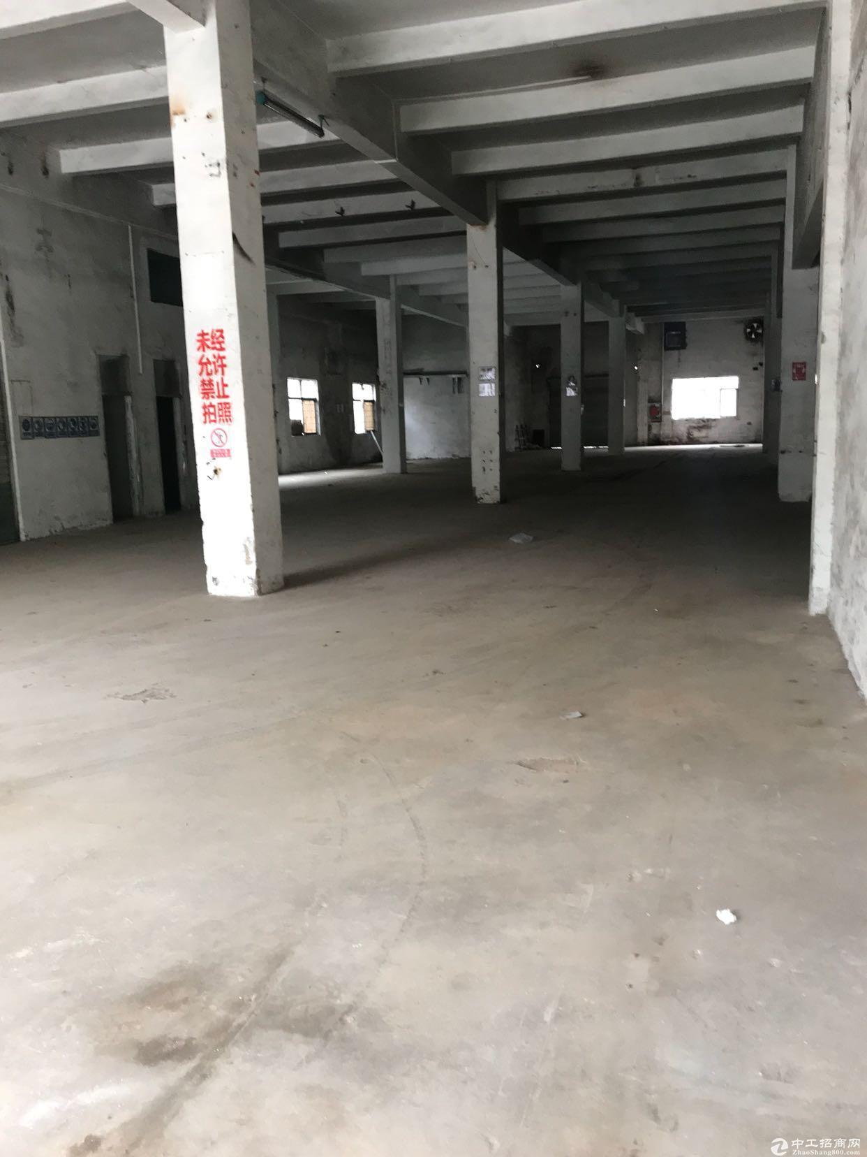 坪山碧岭一楼1200平厂房,不限行业 空地大-图4