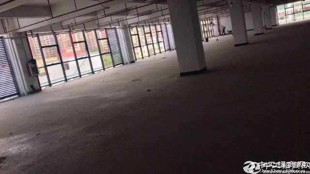 坪山新出厂房独门独院2800平原房东,无公摊,带豪华装
