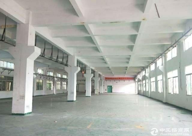 长安厦边 标准1楼1680平厂房出租 带牛角 过环坪