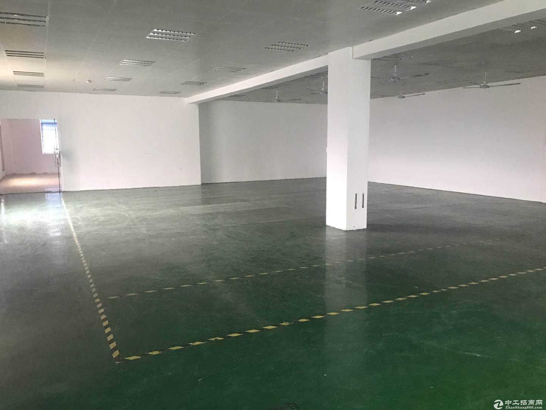 横岗 西坑社区楼上整层带精装办公室2400平米招租