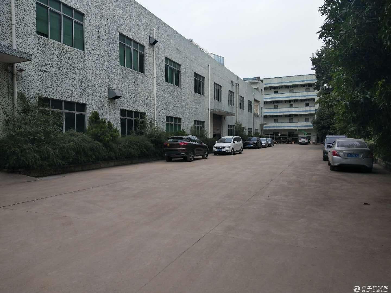 横沥新城工业区10000平米厂房招租