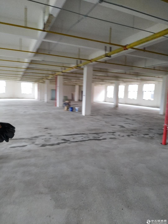 黄陂横店,厂房出售,首层层高6米,可贷款!