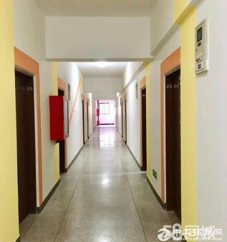坂田 健康科技园红本 150平起租厂房写字楼 大小可分 原业主