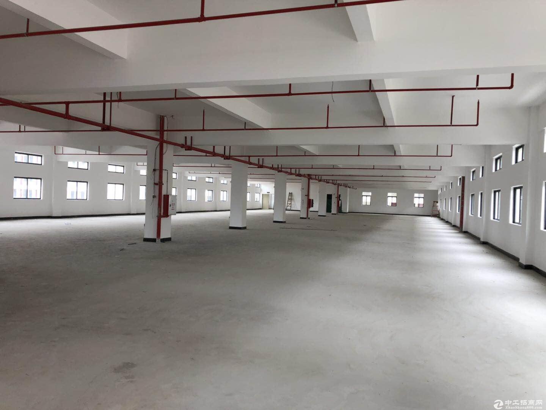 惠城区全新独院标准厂房总面积25210平可分两个独院证件齐可办环评