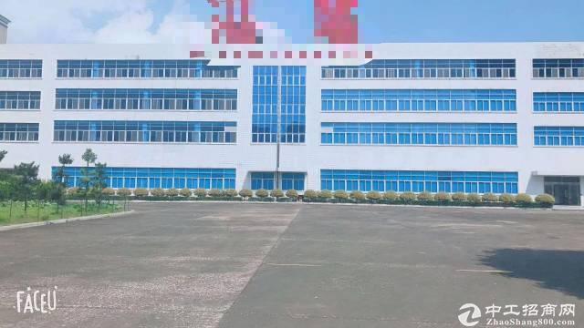 坪地中心村工业区新出独院标准厂房加十二米钢构厂房出租
