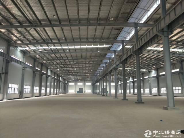 东西湖仓库1000平到40000平 单一层钢结构出租