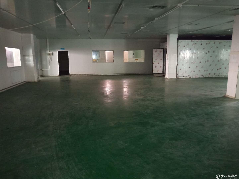 龙岗宝龙红本现成食品厂8000平米招租 现成环评消防