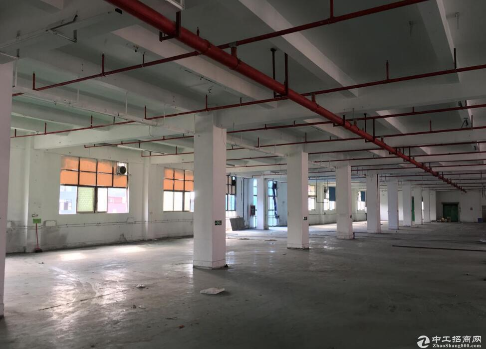 临空北路站附近,独栋全新厂房,带办公和住宿