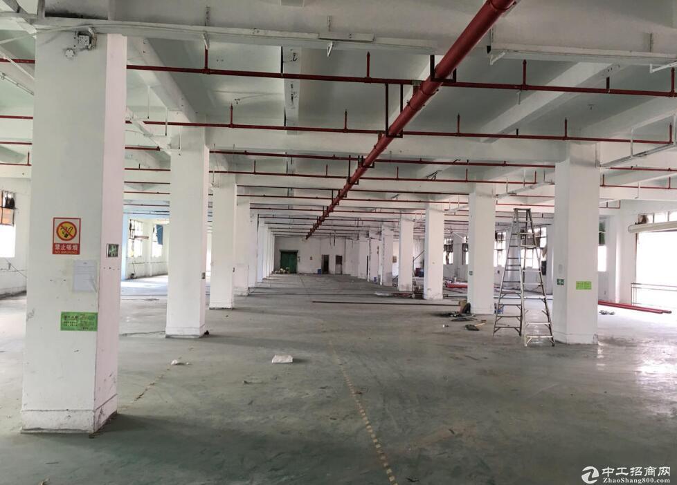 临空北路站附近,独栋全新厂房,带办公和住宿-图2