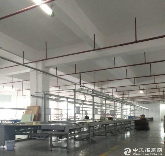 黄陂横店,2100平一楼厂房出售,高6米