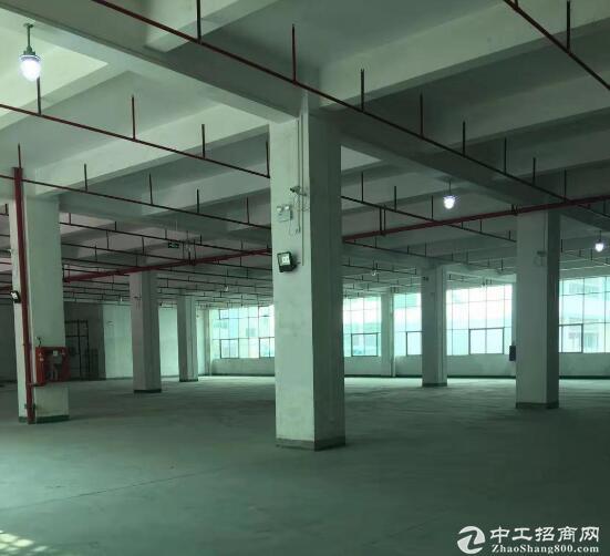黄陂横店全新厂房出租,2千-1万平自由分割