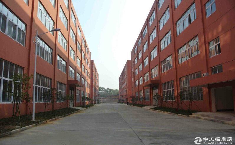 黄陂横店,1楼2100平厂房出租,证件齐全