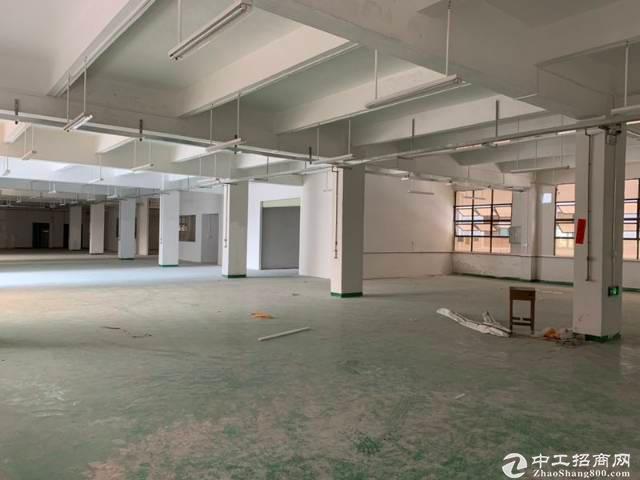 平湖广场边一楼1400平带地坪漆厂房招租