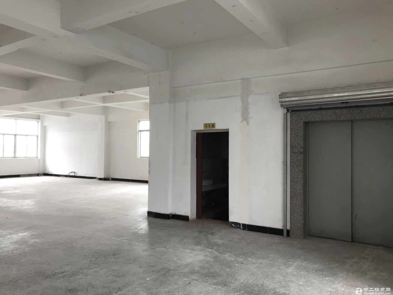 茶园3楼 仓库1500平 层高4米