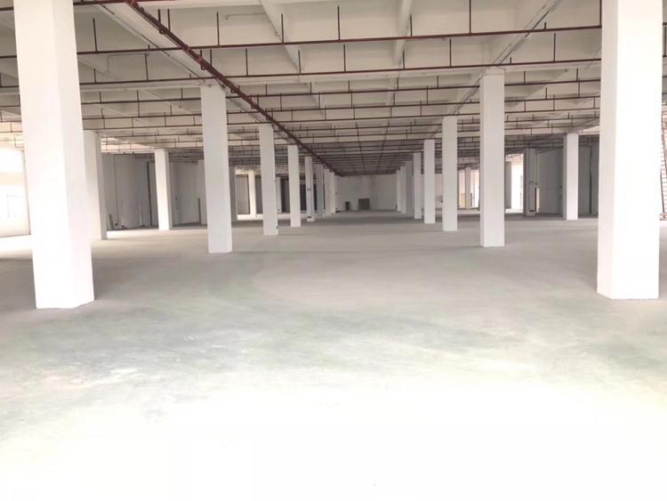 惠阳秋长标准厂房每层2400平,可做仓库,轻加工