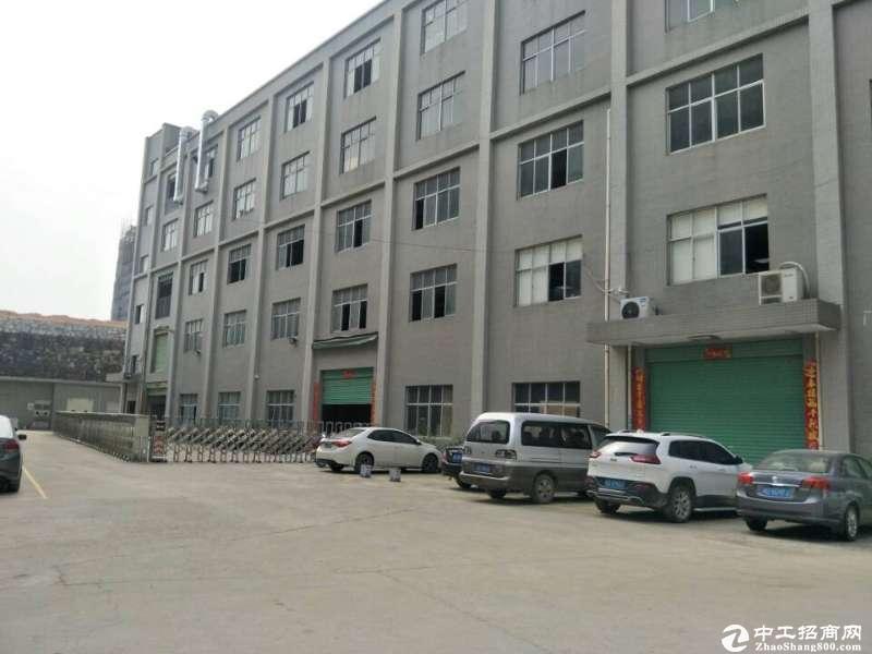 坪山大工业区红本厂房一楼1330平方带消防喷淋出租;