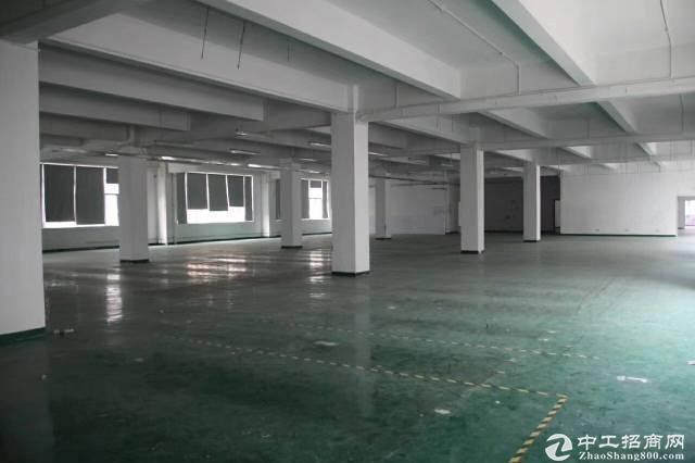 坪山新区新出楼上1200平厂房出租带地坪漆办公室车间仓库