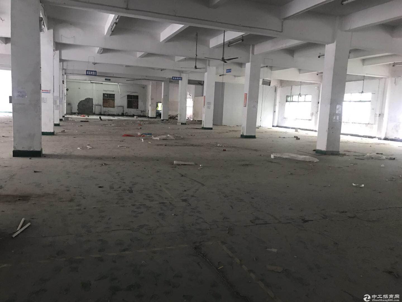 布吉 早禾坑原房东独院厂房分租楼上整层850平米