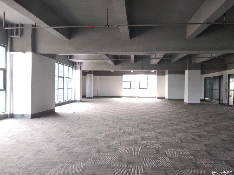 木棉湾地铁1500平新出电商园带简装修消防喷淋