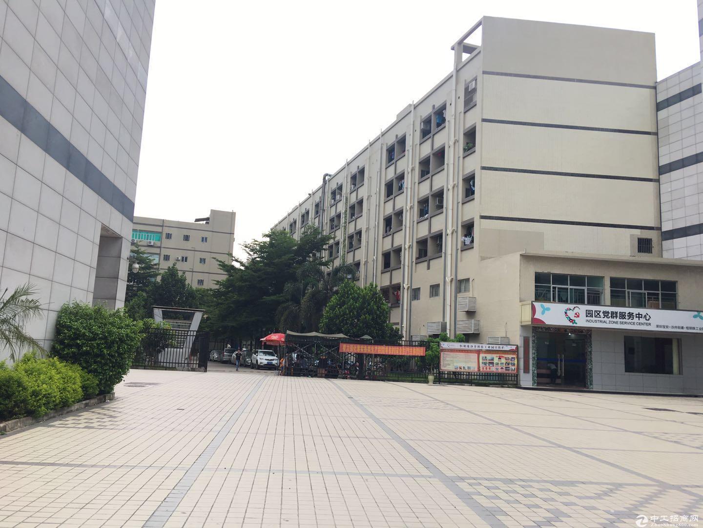 坂田大工业园3500平标准红本厂房出租带消防喷淋