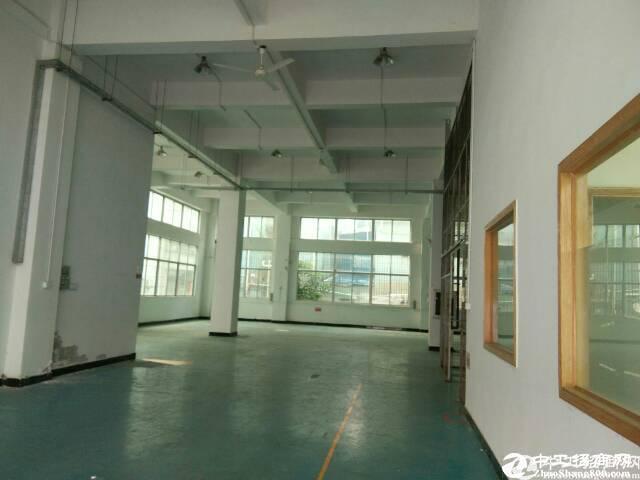 西丽白芒关口楼上320平米带装修厂房招租