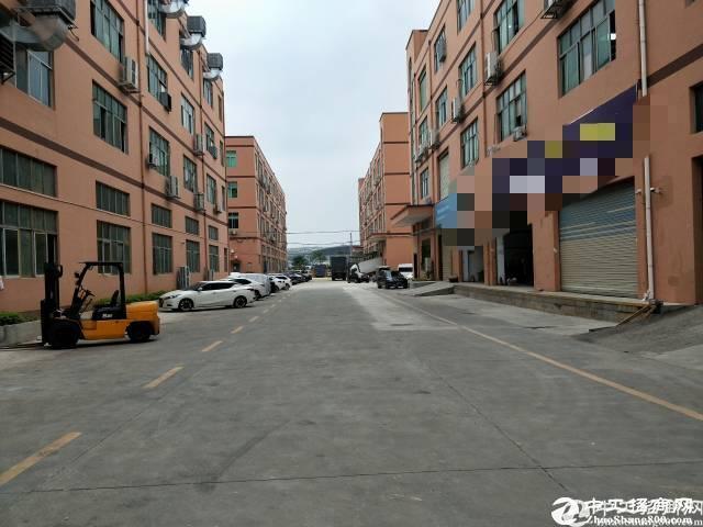 西丽白芒关口,新出楼上655平方厂房出租