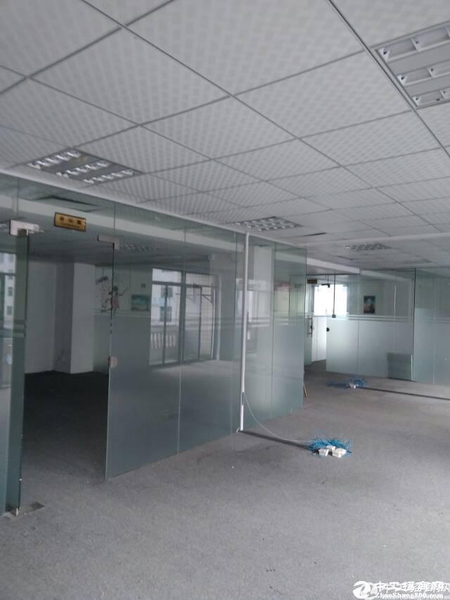 西丽白芒关口,新出楼上655平方厂房出租-图2