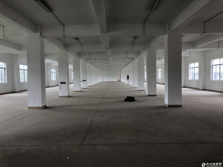 坪山高速路口边独院8300平方厂房出租,空地4500平免费使用