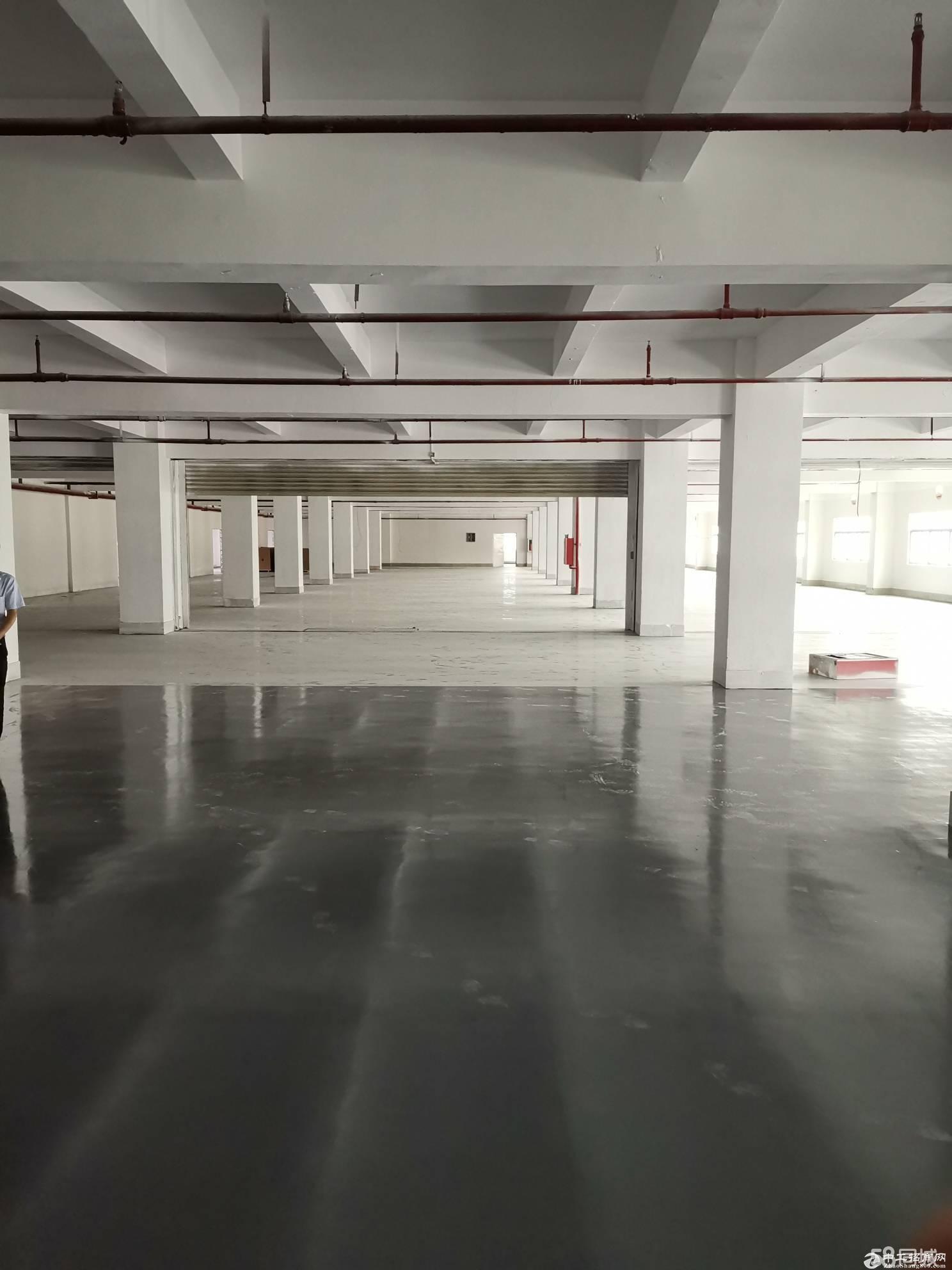 布吉丹竹头红棉路主干道附近新出楼上500平带精装修厂房出租