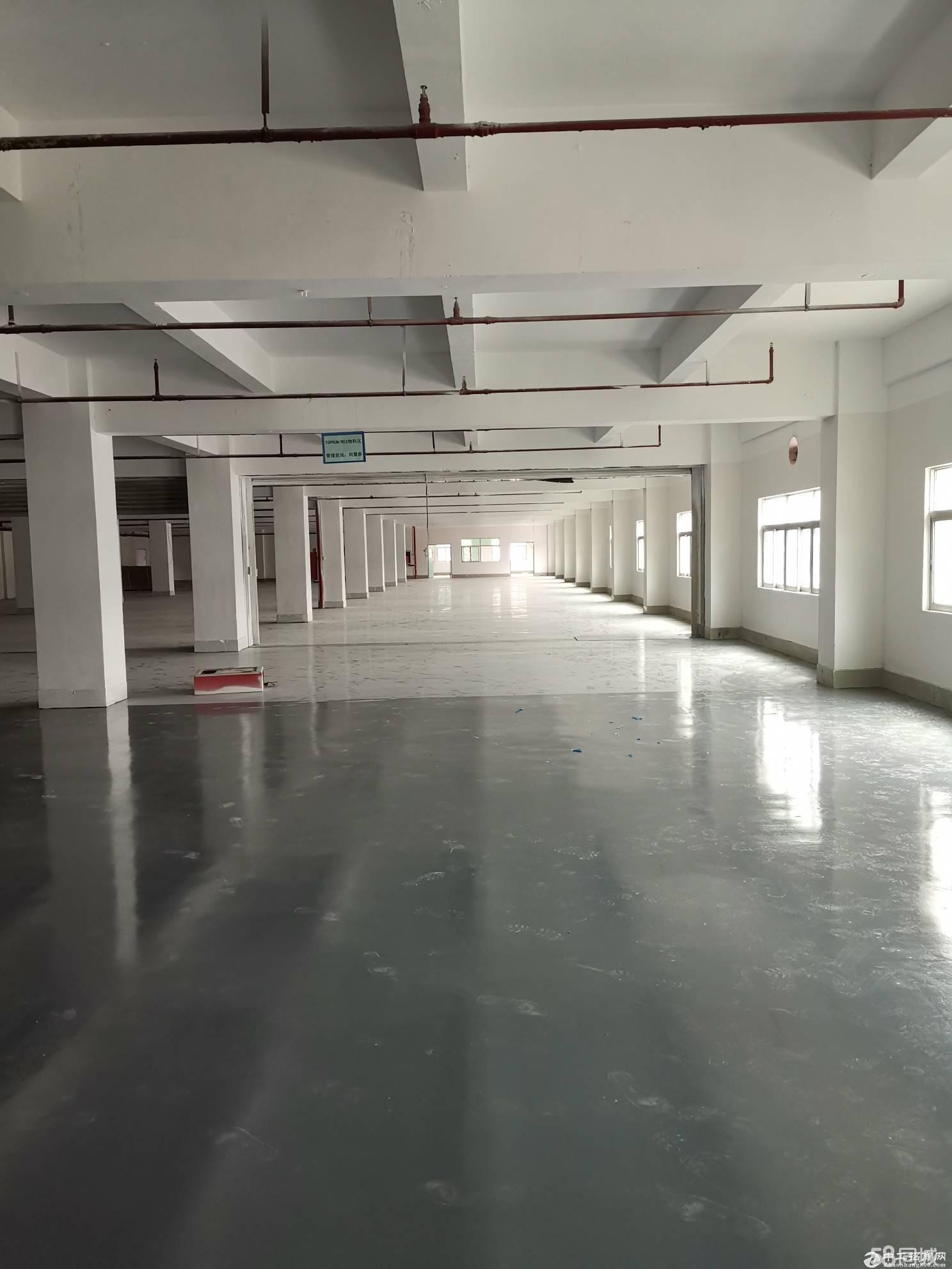布吉丹竹头红棉路主干道附近新出楼上500平带精装修厂房出租-图2