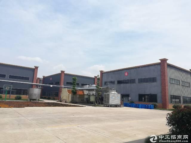 浦江医药食品园区厂房4500平