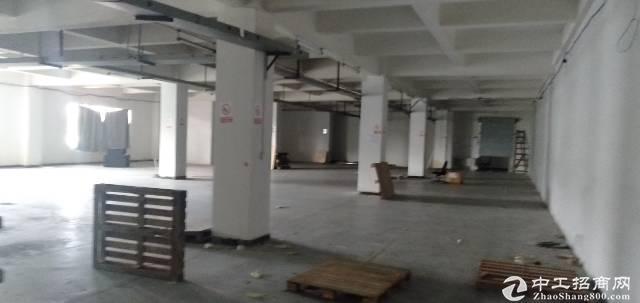 龙华清湖地铁站1500平特价20元一平仓库出租