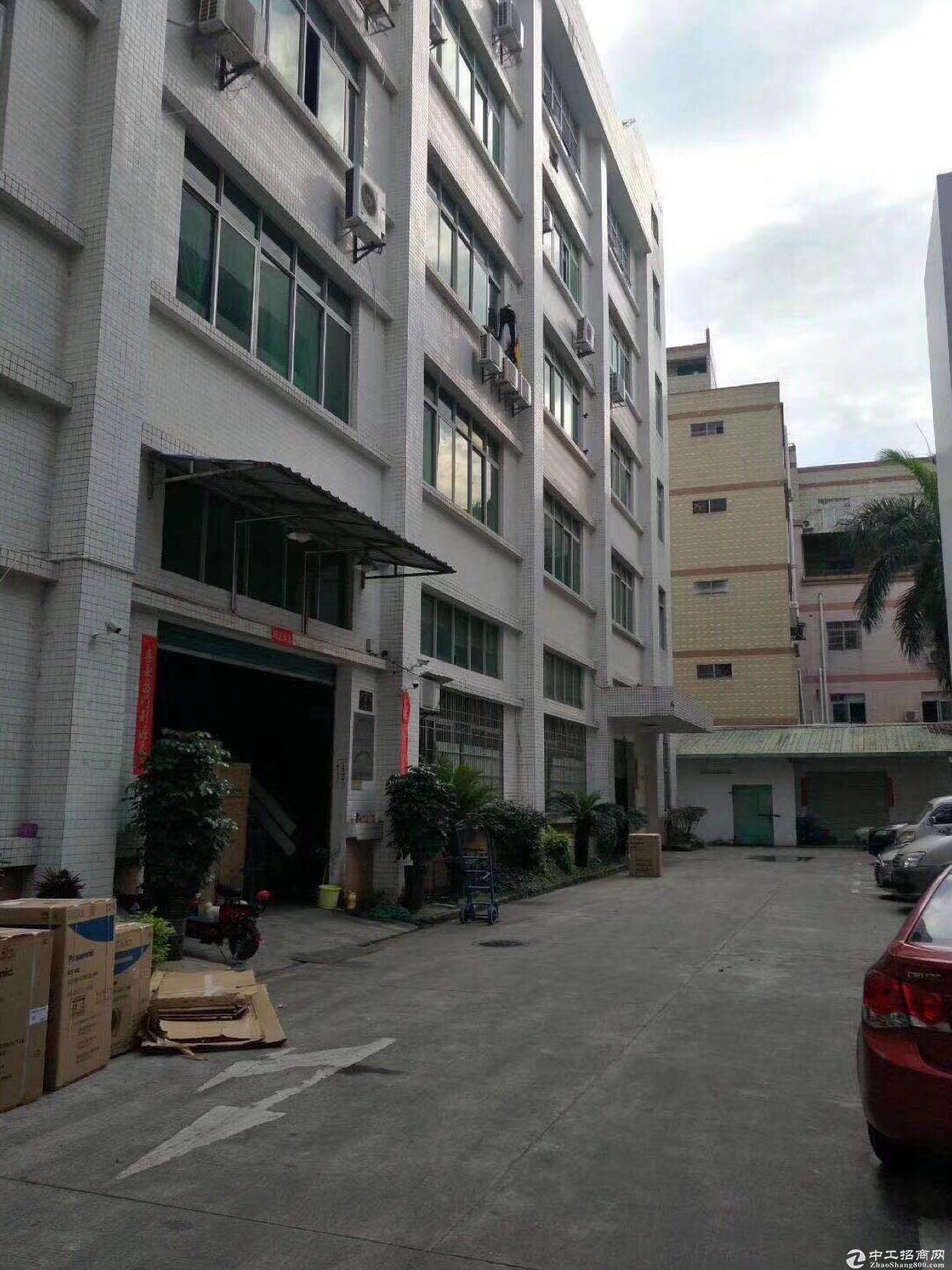 坂田五和大道旁一楼1900平米招租可分租层高6米带装修