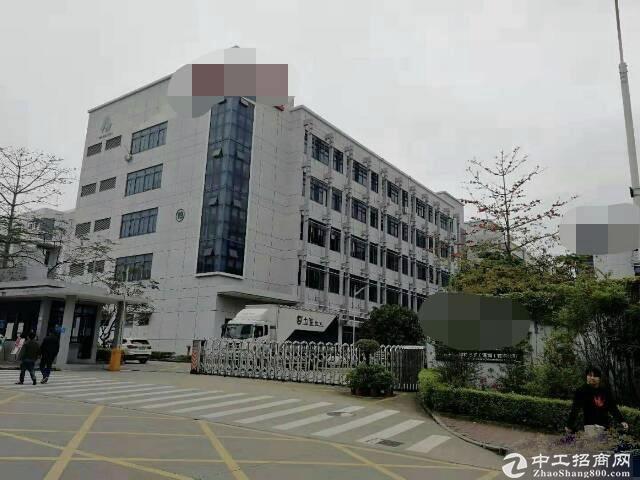 南山西丽白芒关南岗工业区精装带家私1200平办公研发仓库