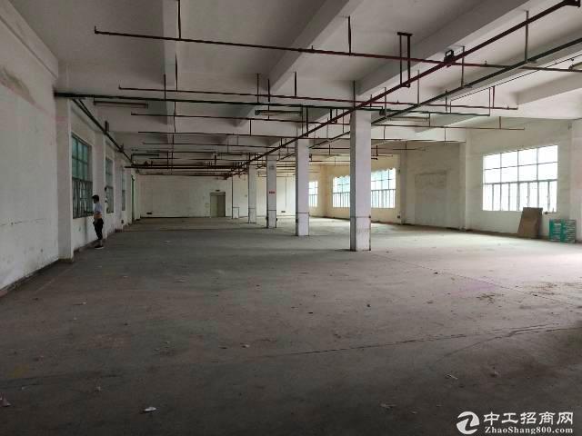 平湖华南城附近新出一楼1260平带消防喷淋厂房出租