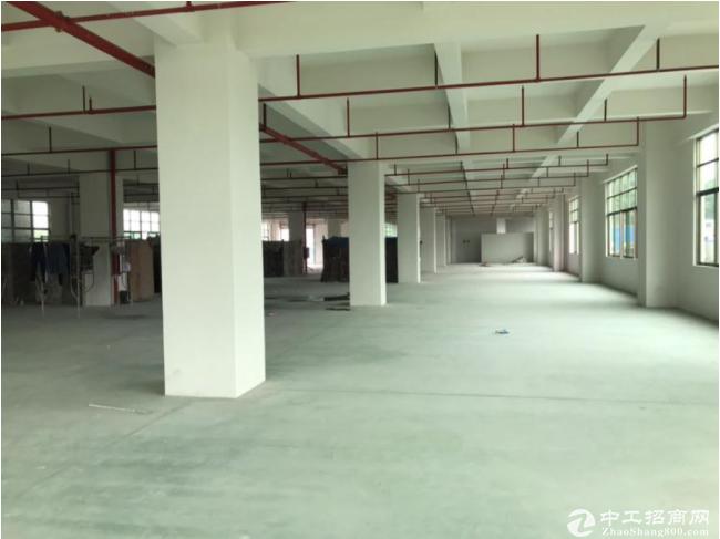 大朗镇原房东标准5层重工业全新独院9800平方