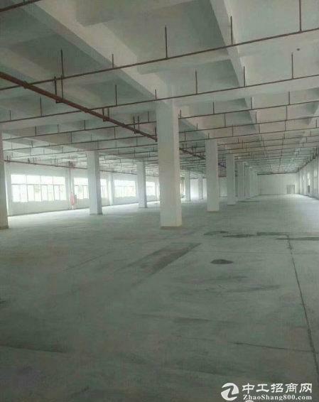 龙岗南联地铁站附近3280平厂房仓库出租一楼层高6米,带喷淋