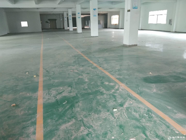 惠阳近深圳原房东独院标准厂房10500平可分租