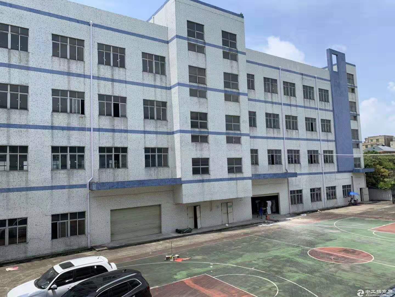 坑梓比亚迪旁 新出独院厂房4层7500平出租 分租