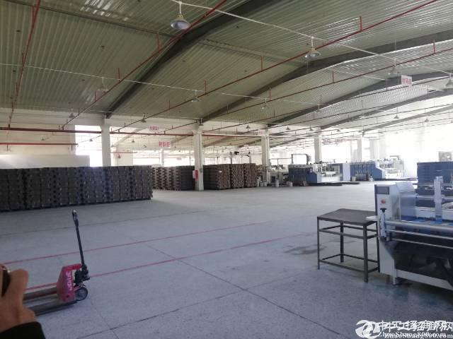 惠阳新圩205国道全新独门独院钢构厂房招租