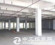 平湖辅城坳原房东独院8500平只租高新行业 形象超好