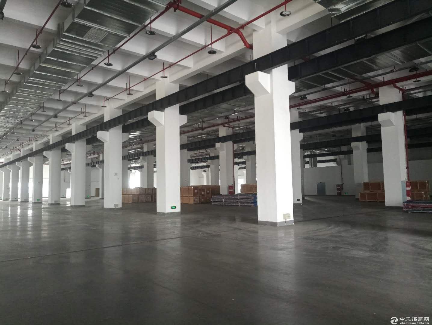 天府新区5000平厂房出售可分割