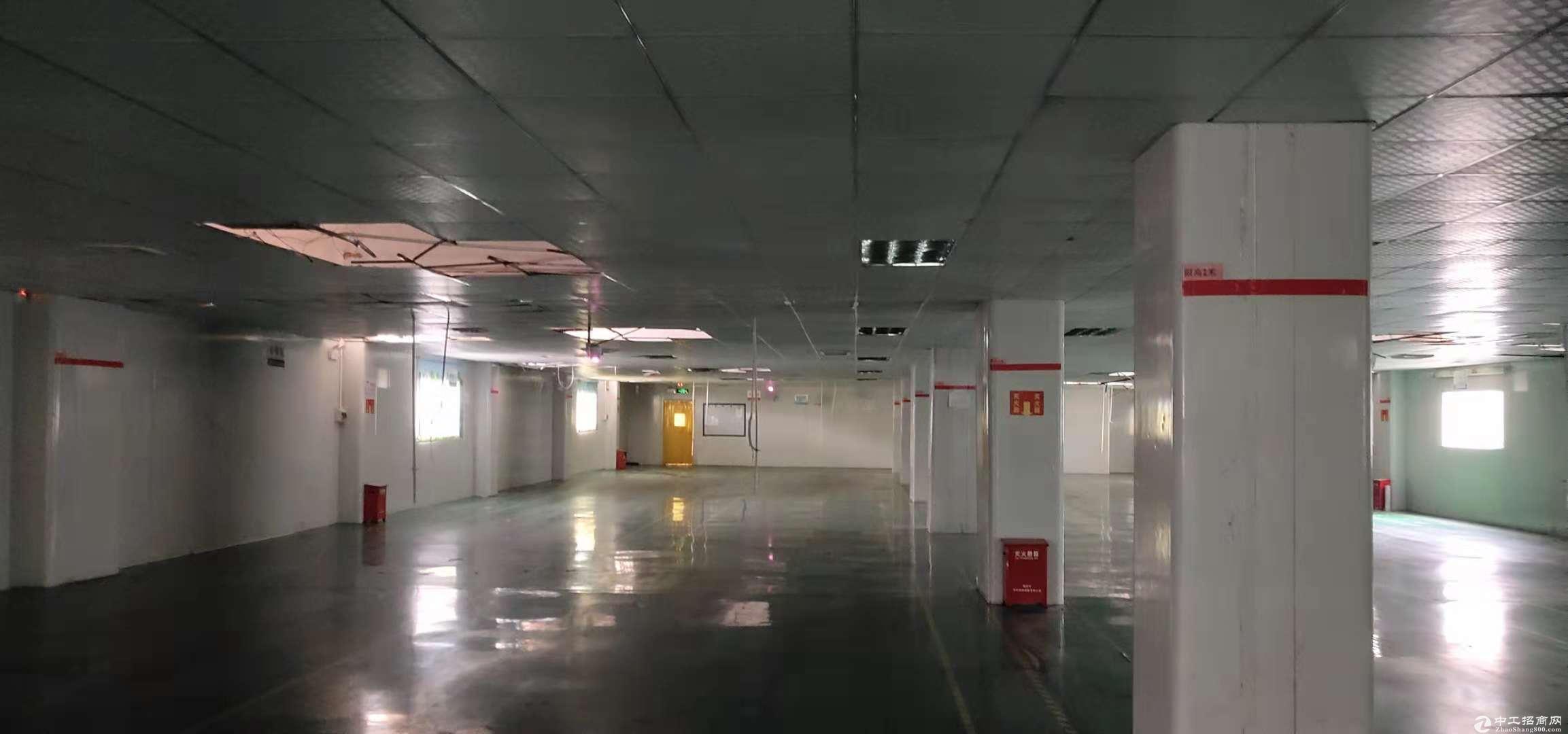 横岗 四联现成电子厂1300平米招租 带地坪漆