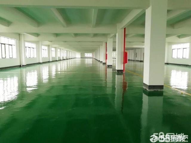 黄埔工业园区楼2000方,适合电子,仓库,设备组装