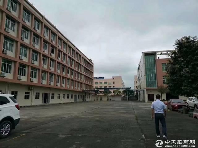 广州黄埔工业区新出楼上5000平方出租(有消防喷彬)