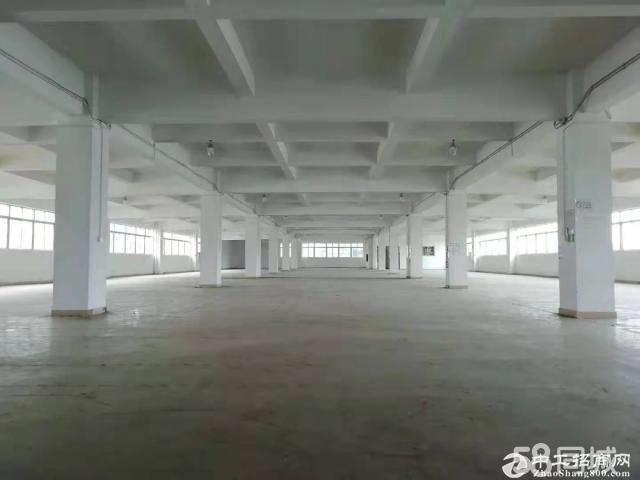 黄埔新空出1800方标准厂房可做电商生产仓库