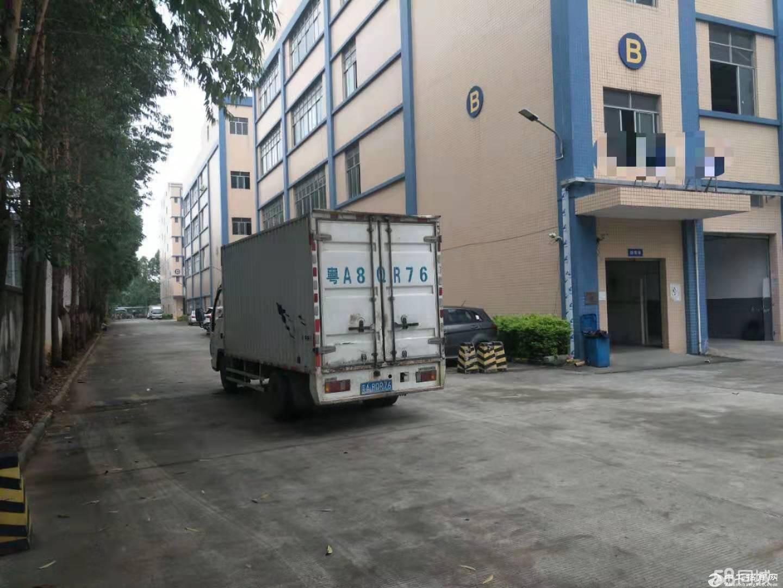 广州新塘镇民营工业区小面积500平标准厂房仓库招租可分租
