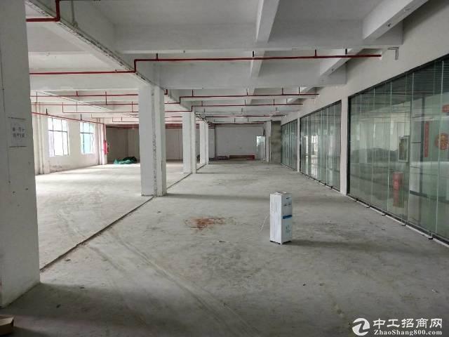 龙华深圳北站1000平厂房仓库出租,100平起分。