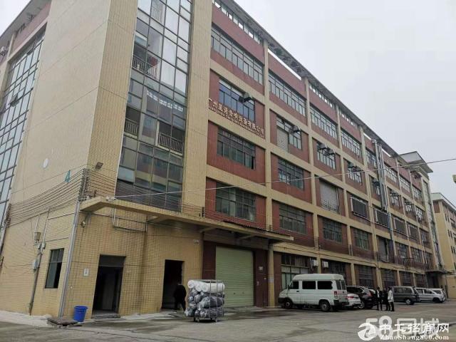 黄埔布匹仓库单层3348方,消防喷淋,有房产证,可进拖头园区管理